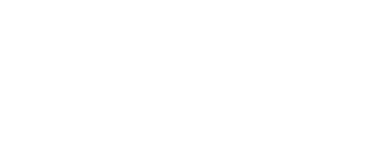 make-a-wish-illinois-logo